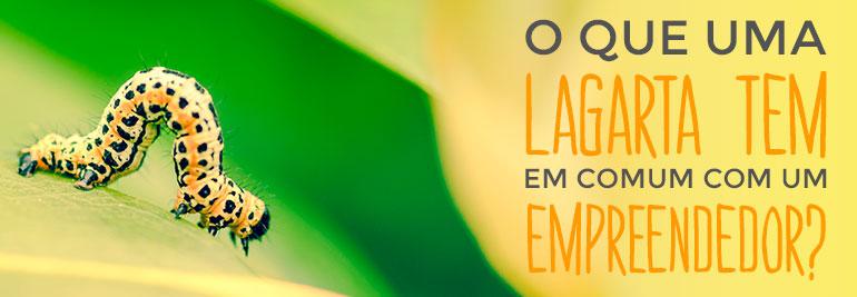 Transformação Profissional Bruno Pinheiro
